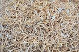 background of the golden curls of wood shavings