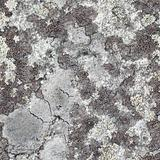 Granite rock with lichen - seamless texture