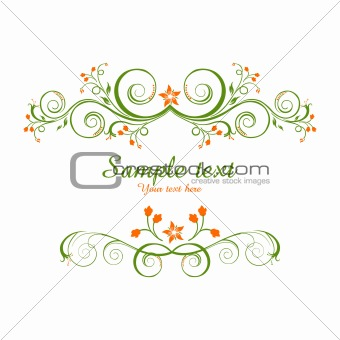 classical vector background