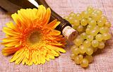 Wine bottle with flower and grapes branch