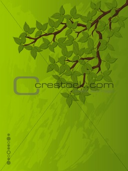 Grunge background with a tree branch