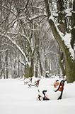 Red benches in the snow