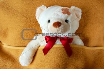 sick teddy