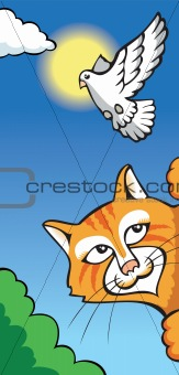 Cat and dove