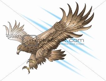 image 3237871 flying eagle from crestock stock photos. Black Bedroom Furniture Sets. Home Design Ideas