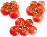bunches of tomatos