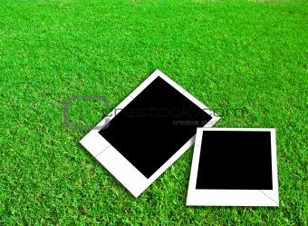 Blank photo frame on green