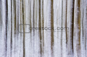 Background of blurred long exposure snow trees in forest