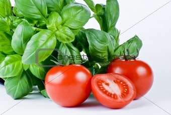 Fresh basil and tomatoes