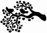 Silhouette of branch with birds