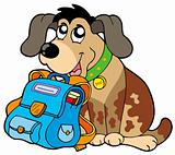 Sitting dog with school bag