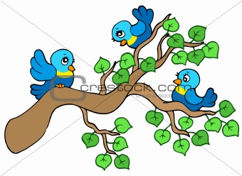 Three small birds sitting on branch