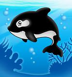 Cartoon killer whale in sea