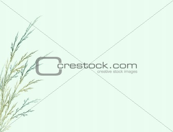 Fractal in the form of a branch on a green background