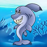 Cute funny shark in sea