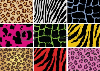 animal skin