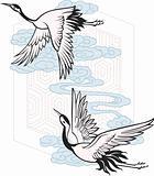 bird graphic design