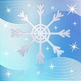 Snowflakes-Winter wallpaper