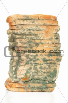 Moldy Bread Loaf