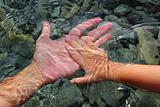 adult and children hands holding underwater