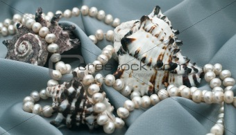 Three cockleshells and beads from natural sea pearls