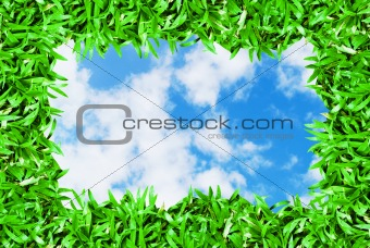 green grass frame on beautiful sky background