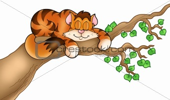 Sleeping cat on tree branch