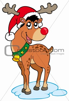 Reindeer in Christmas hat