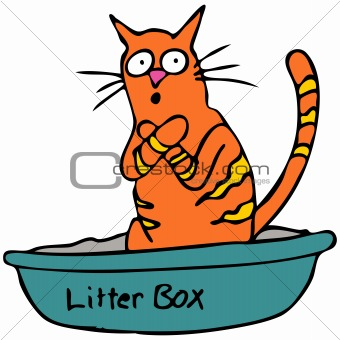 Kitty Litterbox