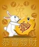 Happy New Year of the Rabbit 2011 Carrying Piggy Bank Gold