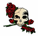 Skull with Rose. Vector