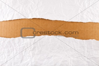 Torn paper strip series - crumpled paper over brown