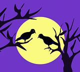 Moonligh Birds