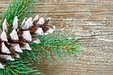 Glitery pine cone on wood background