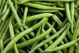 bean pods background