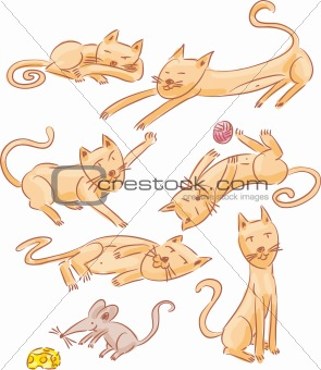 Six cats and one mouse