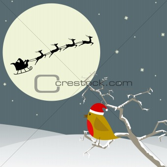 Bird watches Santa flying by