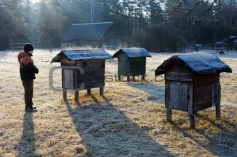 Country apiary in early spring