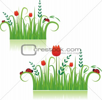 Summer meadow beautiful. Vector illustration