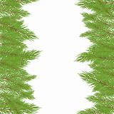 Christmas Fur-tree. Vector illustration