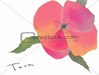 batik poppy isolated  card