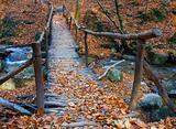 Wooden bridge over brook