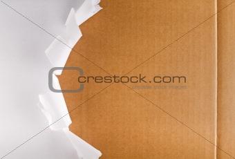 Torn packaging paper revealing cardboard box