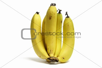 A Bunch of Banana