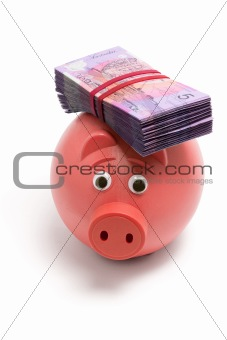 Piggy Bank with Dollar Notes