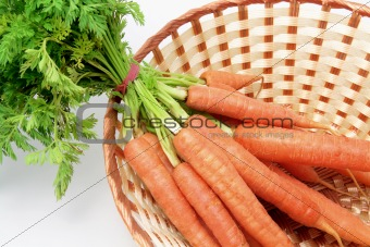 Carrots in Basket