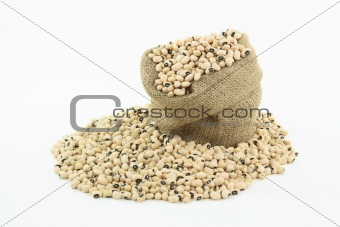 Black Eyed Peas over white background.