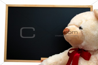 teddy with empty blackboard