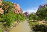 River through Zion