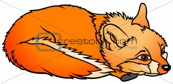 Laying Fox